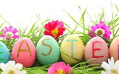 Easter Candy Eggs Taste Test!
