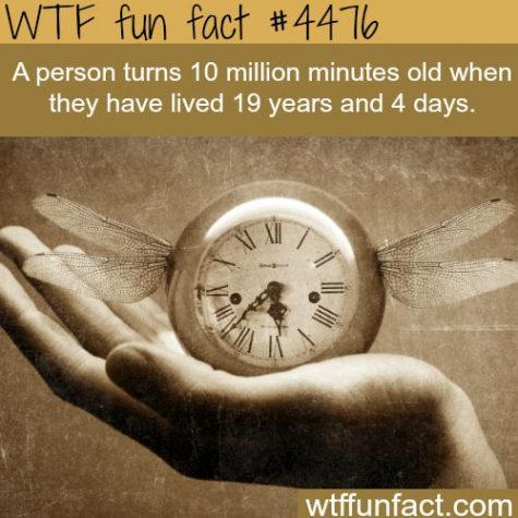 15 Totally Interesting and Random Facts