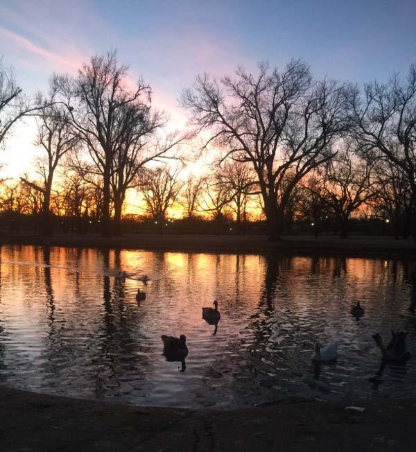 Beautiful sunset at Lakeside Park.