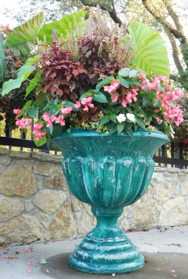 Flower pot at Lakeside Park.