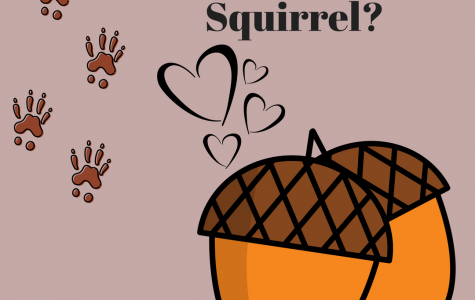 Emotional Support Squirrel?