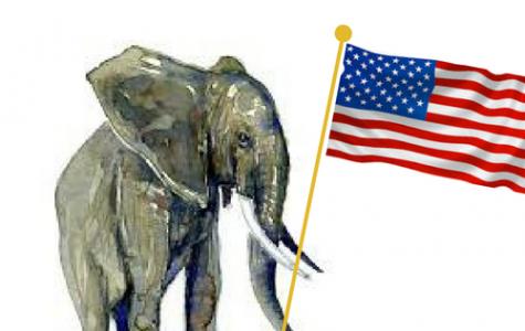 "Lifted Ban on ""Trophy"" Elephants"