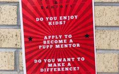 Pups Mentor flyer