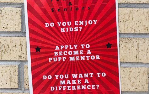 Pups Mentor