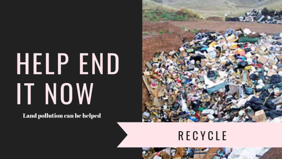 A+filer+for+land+pollution.++PSA+for+land+pollution+and+recycling.+Created+on+Canva.com+