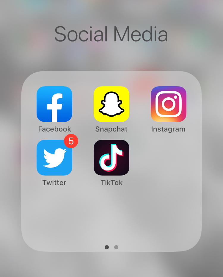 Screenshot of social media apps and sites on an I phone.